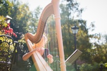 Nicola Veal Wedding Harpist